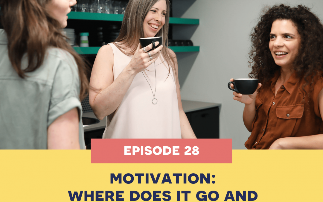 28: Motivation – Where Does It Go And How To Get It Back.